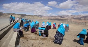 afghan women in blue
